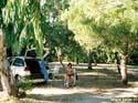 Lies onder de palmbomen, Spanje