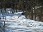 Spelen in de sneeuw, Duitsland