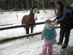 We hebben een dierenboek bij ons, Duitsland