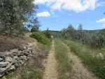 Op zoek naar een oude brug, Griekenland