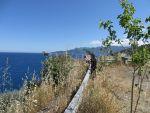 Lies aan het fotograferen, Griekenland