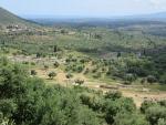 Overzicht over de opgraving bij Messini, Griekenland