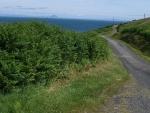 Zicht op Alisa Craig vanaf Kintyre, Schotland