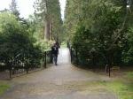 In de botanische tuin van Benmore, Schotland