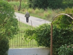 Opa loopt terug naar huis, Perama, Griekenland