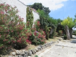 Kleurige flora, Kerkyra, Griekenland