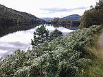 Loch ten oosten van Loch Ness, Schotland