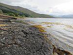 Langs Loch Scridain, Schotland