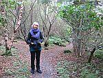 In de tuinen van Duart kasteel, Schotland