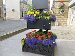 Bloemenpracht in Tain, Schotland