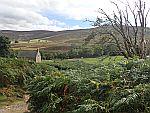 Uitzicht vanaf het Glen Tanar Estate, Schotland