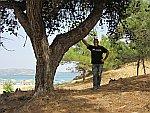 Teije bij Ktira Iodranou, Thassos, Griekenland