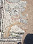 Mozaiek van een stier in het Romeinse badhuis in Dion, Griekenland