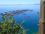 Viskwekerij voor de Noord-Griekse kust, Griekenland
