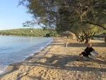 Het Witte Strand, Pteleos, Griekenland