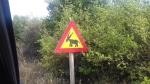Ezels op de weg?, Griekenland