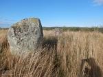 Pictische stenen in een veld, Schotland