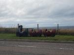 Een bloementreintje in Portknockie, Schotland