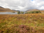 Landschap bij Loch Droma, Schotland
