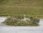 Eilandje met gedenksteen in Loch Stack, Schotland