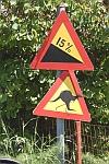 Kangoeroes op de weg in Griekenland?, Griekenland