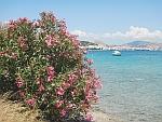 Uitzicht op Koulouri (Salamis stad), Griekenland