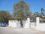 Een boom groeit door een muur, Salamina, Griekenland