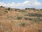 Resten van klassiek Salamina verspreid in het landschap, Griekenland