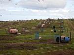 Biologische varkensboerderij in de Hooglanden, Schotland