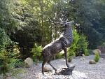 Beeld van een mannetjeshert, Schotland